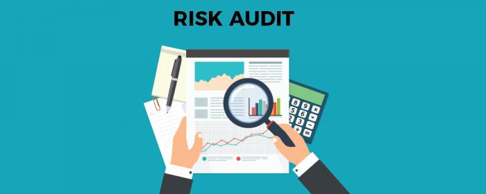 Risk Audit - Risk Assessment Matrix