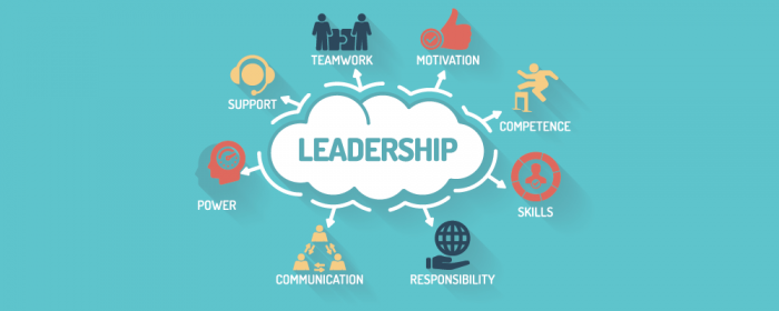 leadership as a project management skills