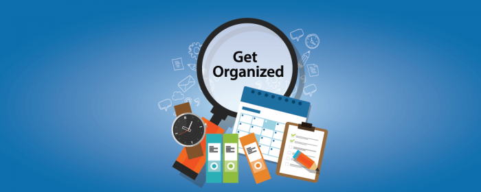 organization - project management skills
