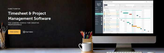 FunctionFox: Timesheet and Project Management Software