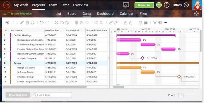 projectmanager.com gantt chart