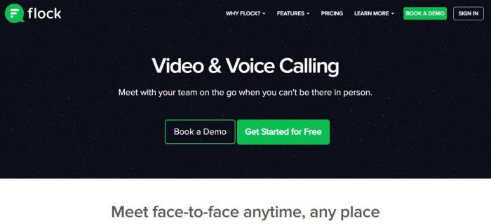 Flock video conferencing