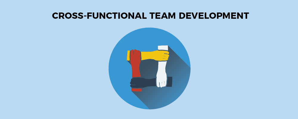 Cross functional team development