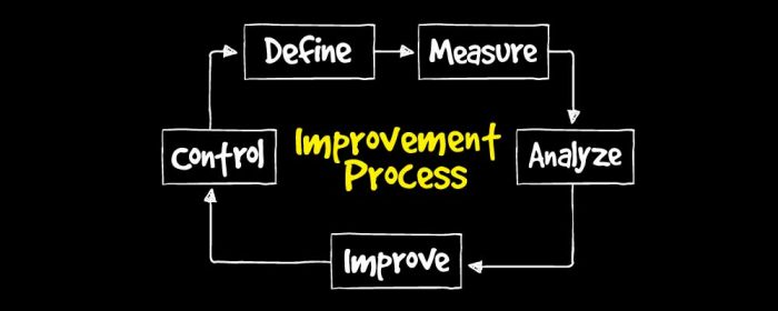 what is business process improvement
