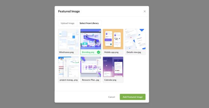 Set custom feature image background