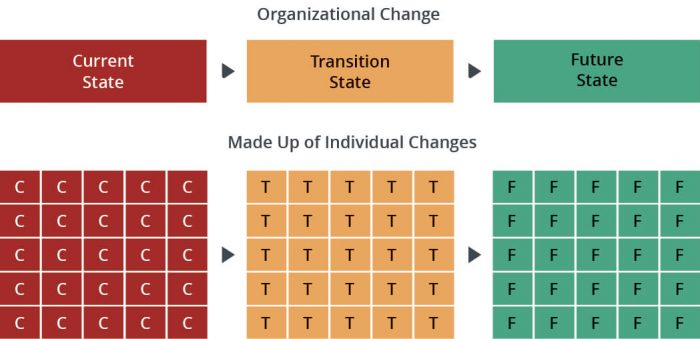 organizational change vs project management