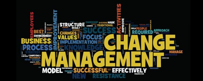 types-of-organizational-change